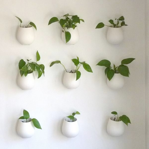 Charming Indoor Wall Mounted Plant Holders   Hanging Planters And Container Garden Ideas For Indoors