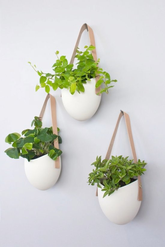 Nice Indoor Wall Mounted Plant Holders   Set Of 3 Porcelain And Leather Hanging Containers By Light + Ladder · Hanging  PlantsIndoor PlantsHanging Wall PlantersHanging ...