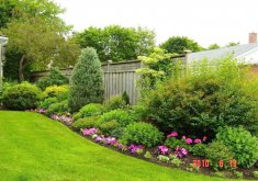 garden yard ideas