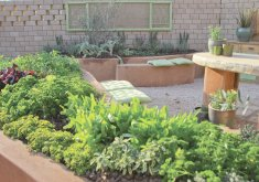 how to herb garden