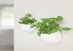 Lovely Indoor Wall Mounted Plant Holders   Interior Design Ideas