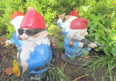 Superb Where To Buy Garden Gnomes   Combat Garden Gnomes For Sale